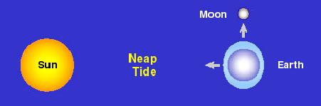 Fig. 2: Neap Tides