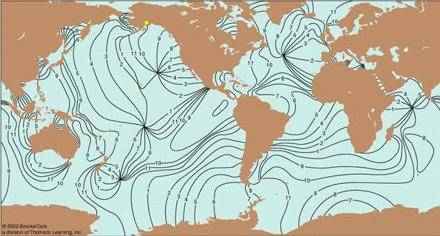 Global tides