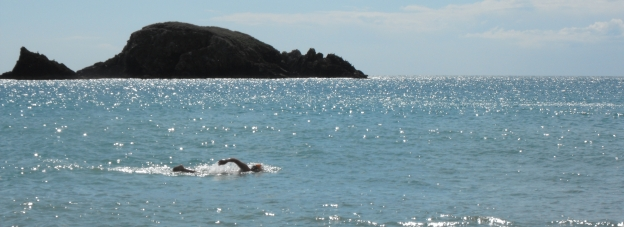 Donal swimming in front of Brown's Island, Kilfarassey