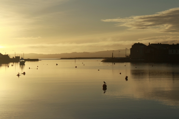 Dungarvan Harbour dawn-resized