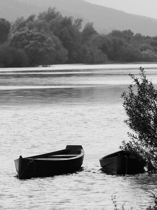 River Suir, Co. Tipperary, Ireland