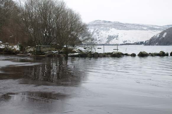 Ice at the edges of Lough Dan,scene of Fergal Somerville's Ice Mile Invitationals.