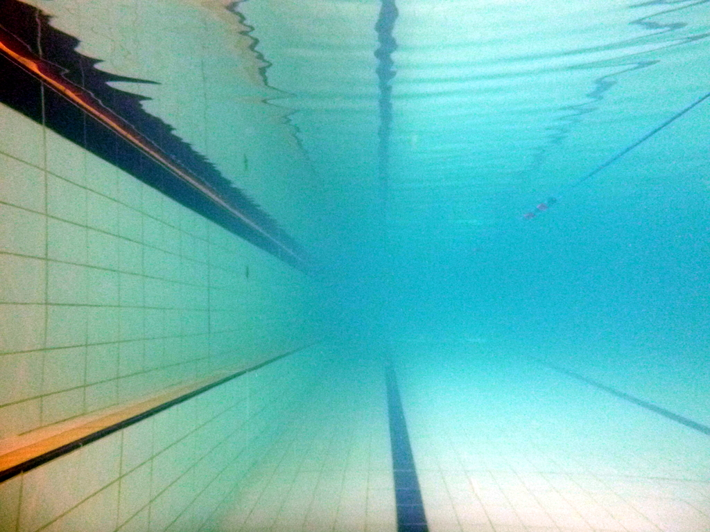 lane lines-exif-resized | LoneSwimmer