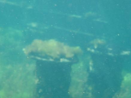 Samson wreck underwater