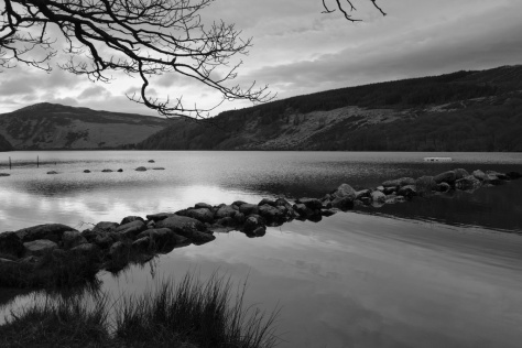 Lough Dan on swim morning before the buoys were placed