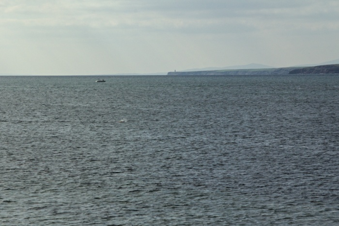 Stuck in the current. In the far distance is Powerstown Head on the east side of Tramore bay, my usual haunt.
