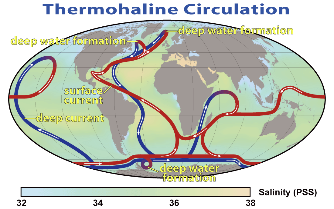 Image of the Global Thermohaline Circulation currents