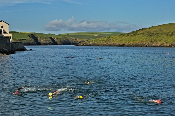 Swimmers returning to slipway after Sandycove swim