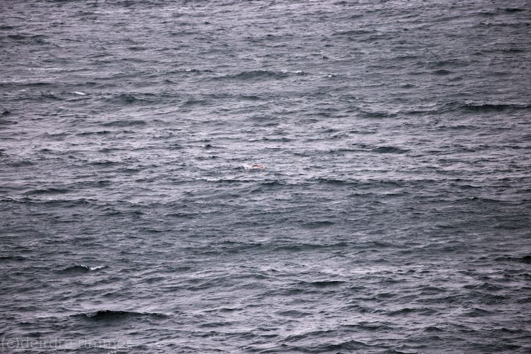 Lone swimmer swimming out in rough water