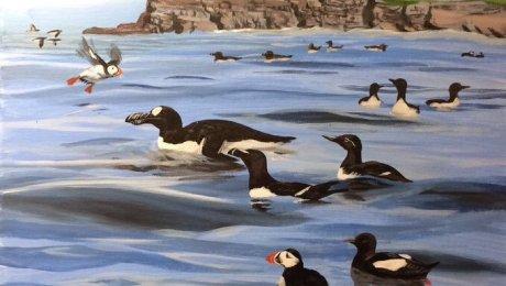 Oil painting of seabirds at Brownstown Head